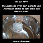 1 Yen coin can float on water