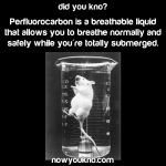 PFC: a breathable liquid