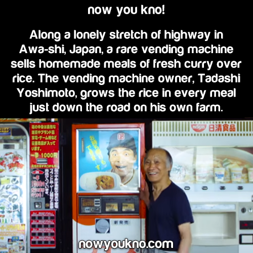The only curry vending machine in Japan