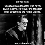 The name of Frankenstein's monster
