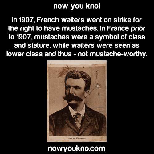 The French Mustache strike