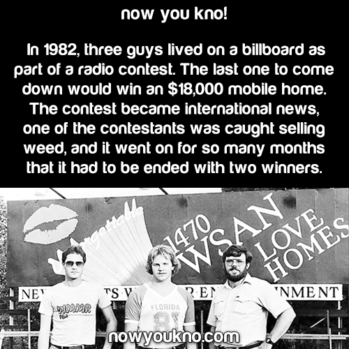 In the 1980's three guys lived on a billboard