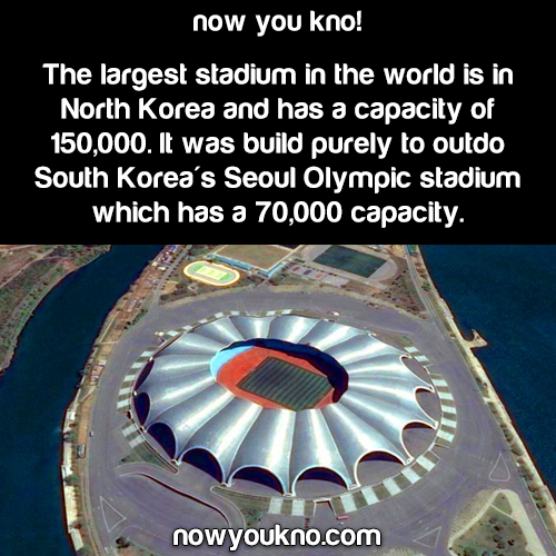 The largest stadium in the world