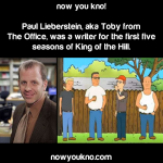 Toby from The Office was a writer for King of the Hill