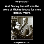 Walt Disney was the voice of Mickey Mouse