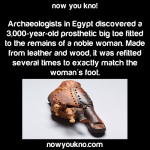 Ancient prosthetic toe