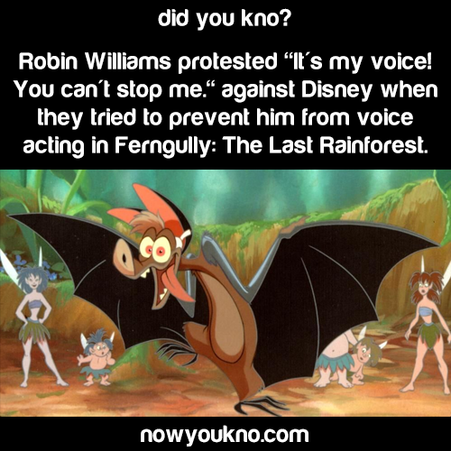 "Robin Williams: ""It's my voice!"""