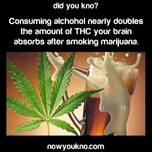 Alcohol doubles THC your brain absorbs