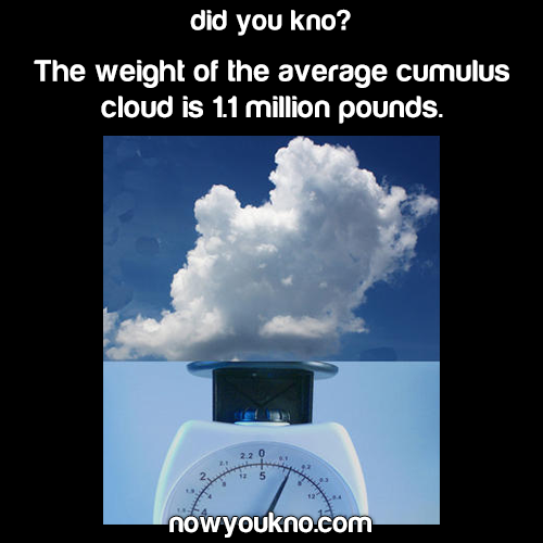 How much the average cloud weighs