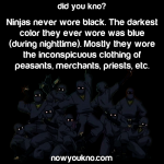 Ninjas never wore black