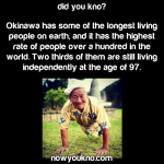 Okinawa has some of the longest living people on earth
