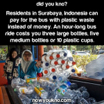 "Indonesia's ""plastic bus"""