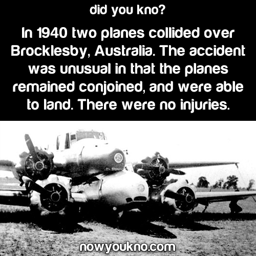 The weird plane accident in Brocklesby